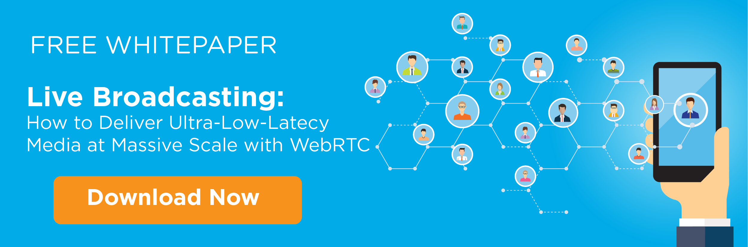 Diagnosing Network Problems with WebRTC Applications