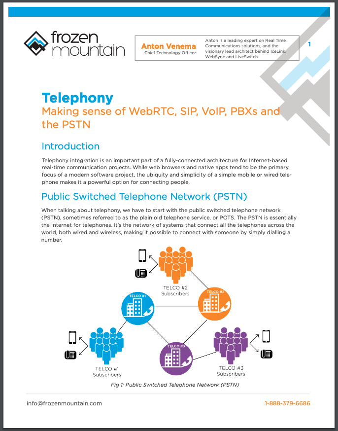 Telephony SIP, VoIP, PBX, and PSTN White Paper